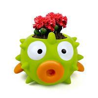 Kid Panting Toy Carnation Прорастает растущая обучающая игрушка Цветной
