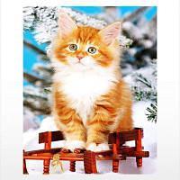 Naiyue 9735 Кошки Print Draw Алмазный рисунок Цветной