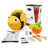 Игрушка для поезда для малышей Cute Bee Shaped Flowerpot Safflower Growing Toy Цветной