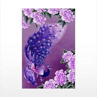 Naiyue 7018 Богатство и богатство Open The Peacock Print Draw Алмазный рисунок 1 шт