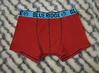 Подростковые трусы для мальчика Blue Ridge