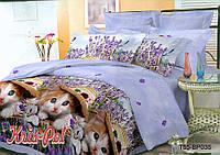 Комплект постельного белья евро с котами  3д недорого