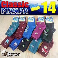 Носки детские махровые для девочки  Classic Украина Гребенюк  размер 14 - случайное ассорти  НДЗ-07215