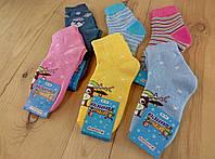 Носки  детские махровые Успех Житомир Украина размер 16-18 НДЗ-0707229