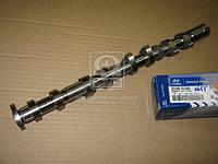 Распредвал (Производство Mobis) 241002C200, AHHZX