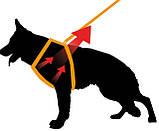Шлея кожаная для собак GIOTTO Р LUXOR S Ferplast Ферпласт (черная,бежевая), фото 4