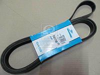 Ремень поликлиновый  6PK2203 (производство DAYCO) (арт. 6PK2203), ACHZX