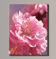 Картина HolstArt Цветение сакуры 54*70,5см арт.HAS-179