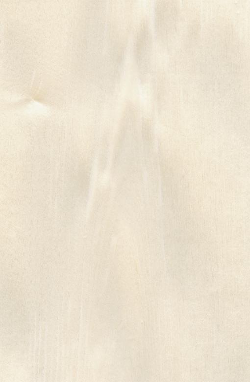 Шпон Клен Американский Крашеный Табу Арт. G5.010