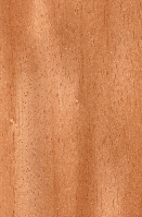 Шпон Ята Крашеный Табу Арт. T3.003