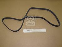 Ремень поликлиновый 6PK1495 (производство DONGIL) (арт. 6PK1495), ABHZX