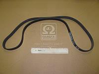 Ремень поликлиновый 6PK1530 (производство DONGIL) (арт. 6PK1530), ABHZX