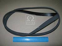Ремень поликлиновый 6PK1564 (производство DONGIL) (арт. 6PK1564), ABHZX