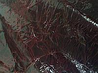 Натуральная лакированная кожа с эффектом сжатия бордовая, фото 1