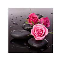 Naiyue 9590 Roses Print Draw Алмазный рисунок черный&красный