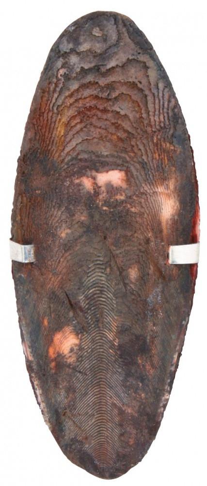 Мел сепия Trixie Cuttle Fish Bone для птиц со вкусом шоколада, 12 см