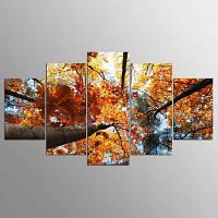 YSDAFEN HD Золотые листья Холст Печать Декор помещения Печать Плакат Изображение 30x40cмx2+30x60cмx2+30x80cмx1 (12x16дюймовx2+12x24дюйм