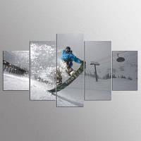 YSDAFEN 5 панельных HD печатных снежных лыжных салазок на холсте 30x40cмx2+30x60cмx2+30x80cмx1 (12x16дюймовx2+12x24дюйм