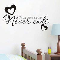 DSU Hot Sale никогда не заканчивается Цитаты Виниловые наклейки Стикеры для стен Home Decor Living Room 55x30cм