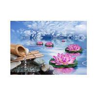 Naiyue 7093 Пейзаж Озерный чертеж с бриллиантами Цветной