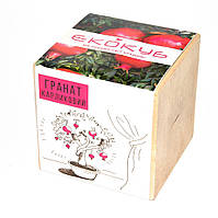 Набор для выращивания Экокуб Гранат 114-10817367