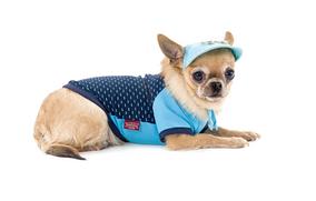 Футболка Pet Fashion 'Спорт' для собак M