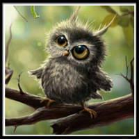 NAIYUE J-5 Животная сова Печать Ничьей Алмазная живопись Алмазная вышивка Темно-коричневый