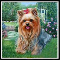 NAIYUE 9438 Живопись для собак Печать Алмазная живопись Алмазная вышивка Цветной
