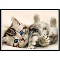 NAIYUE 9591 Живопись для животных для рисования Алмазная живопись Алмазная вышивка Цветной