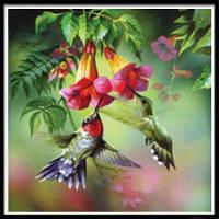 NAIYUE 9434 Животная птица Печать Алмазная живопись Алмазная вышивка Цветной
