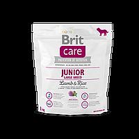 Сухой корм для щенков и молодых собак крупных пород Brit Care Junior Large Breed Lamb & Rice 1 кг