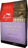 Сухой корм Orijen Puppy Large 38/16 для щенков крупных пород 11,4 кг