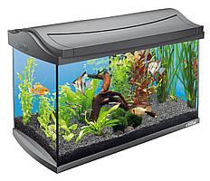 Аквариум Tetra Starter Line LED 54L для золых рыбок, черный, 54 л
