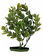 Декорация Trixie Plastic Plants для аквариума, растения, пластик, 17 см, фото 1