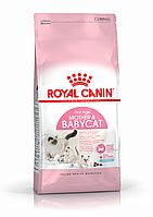 Royal Canin Mother & Babycat 400 г для кят до 4 мес