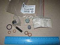 Ремкомплект форсунки Д-245С МТЗ 920 (форсунка  455) с проставкой  (арт. 275-1112001-02), ABHZX