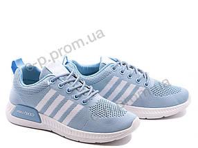 Кроссовки женские Violeta (33-33 l.blue-white)   8 пар (Код 119008)