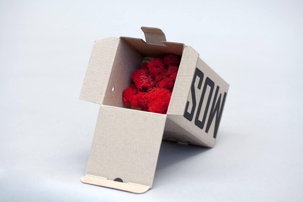 Сувенир Moss Cube