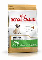 Royal Canin (Роял канин) Pug Junior (0,5 кг) корм для щенков породы Мопс до 10 месяцев