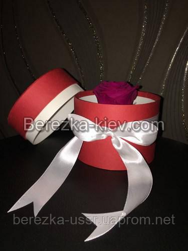 Стабилизированная роза в красной коробке (малиновая)
