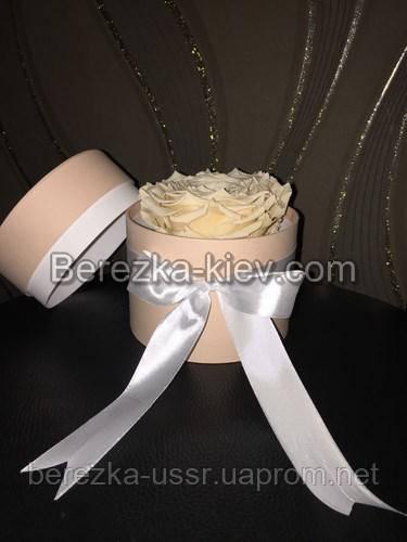 Стабилизированная роза ХХL в кремовой коробке (кремовая)