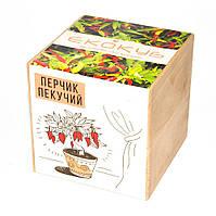 Набор для выращивания Экокуб Жгучий красный перец 114-10817368