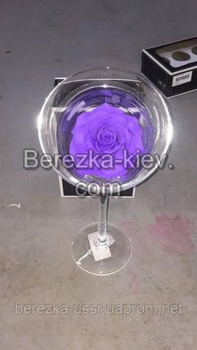 Стабилизированная роза ХХХL в бокале (фиолетовая)