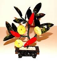 Дерево Перцы-Монеты 6 плодов