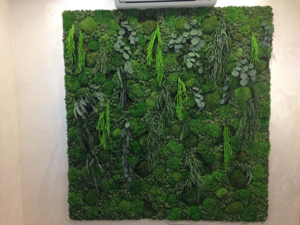 Картины из стабилизированных растений