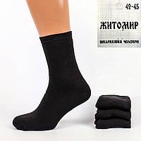 Мужские махровые носки Житомир М14. В упаковке 12 пар.