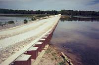 Очистка прудов, водоёмов от мула, камыша; +380 (67) 429-04-50