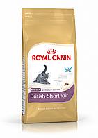 Royal Canin (Роял Канин) Kitten British Shorthair (10 кг) корм для котят породы британская короткошерстная