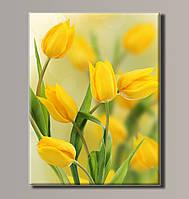 Картина HolstArt Желтые тюльпаны 54*70,5 см арт.HAS-196