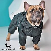 Одежда Комбинезон для собак водонепроницаемый Forward, дождевик